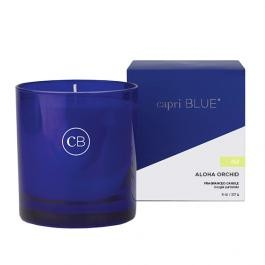 capri BLUE Boxed Tumbler